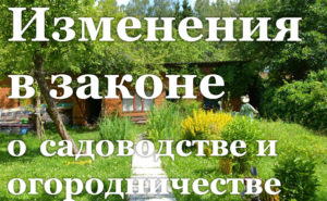 садоводство и огородничество