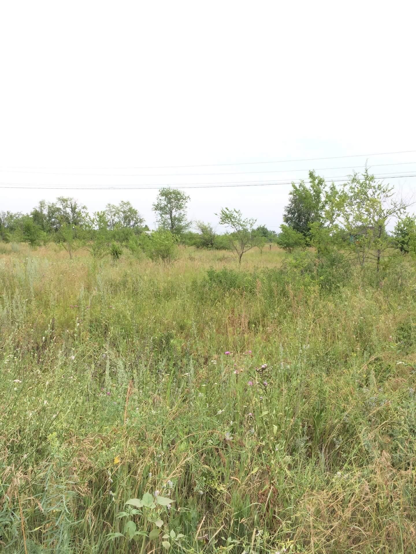 Земельный участок, г. Кинель (Сосновый бор), агентство недвижимости Александра Замула
